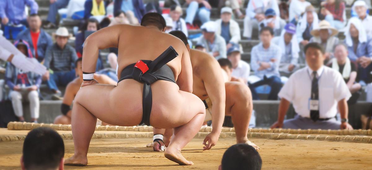 去東京看相撲比賽吧!