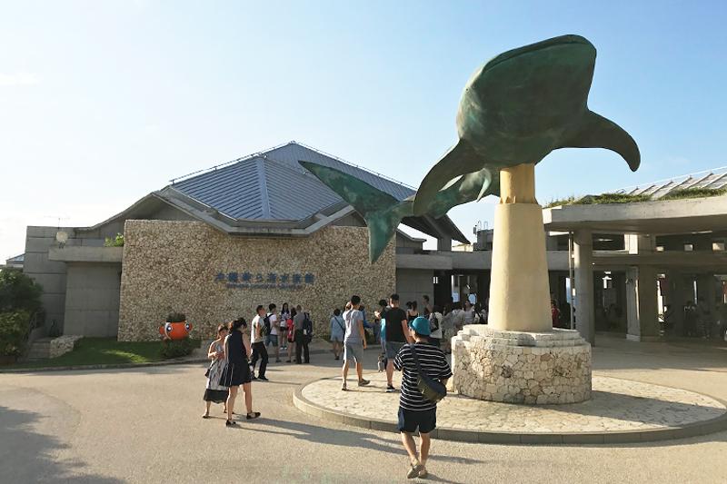 沖繩名護一天遊行程推薦美麗海水族館