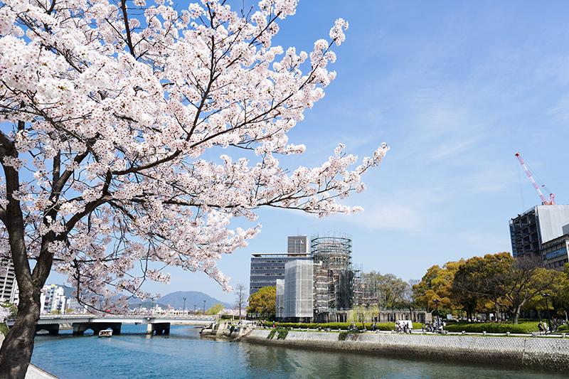 廣島平和紀念公園櫻花
