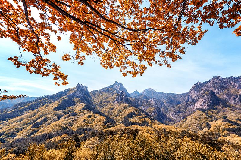 韓國雪嶽山