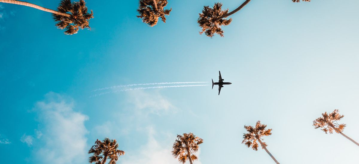 Los angeles flight