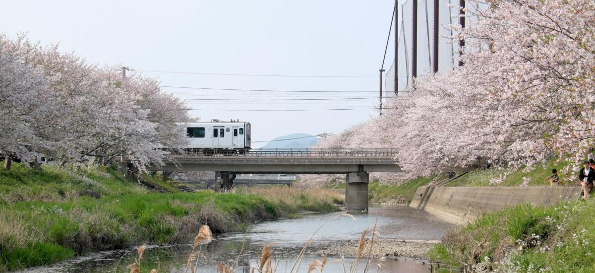 福岡-機票